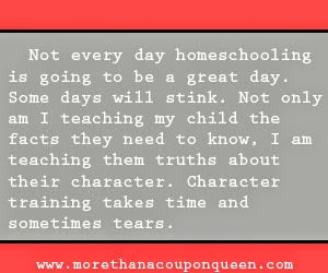 10 homeschoolers wish they could say