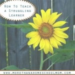 How to Teach a Struggling Learner