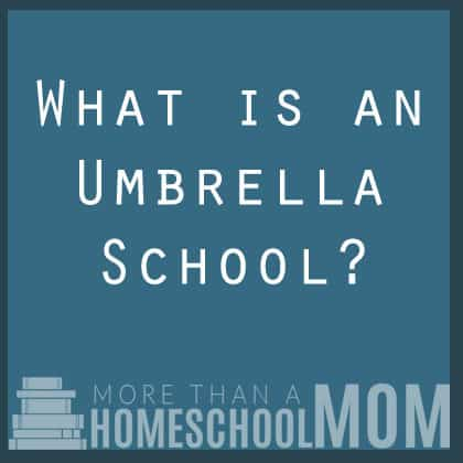 What is an umbrella school?