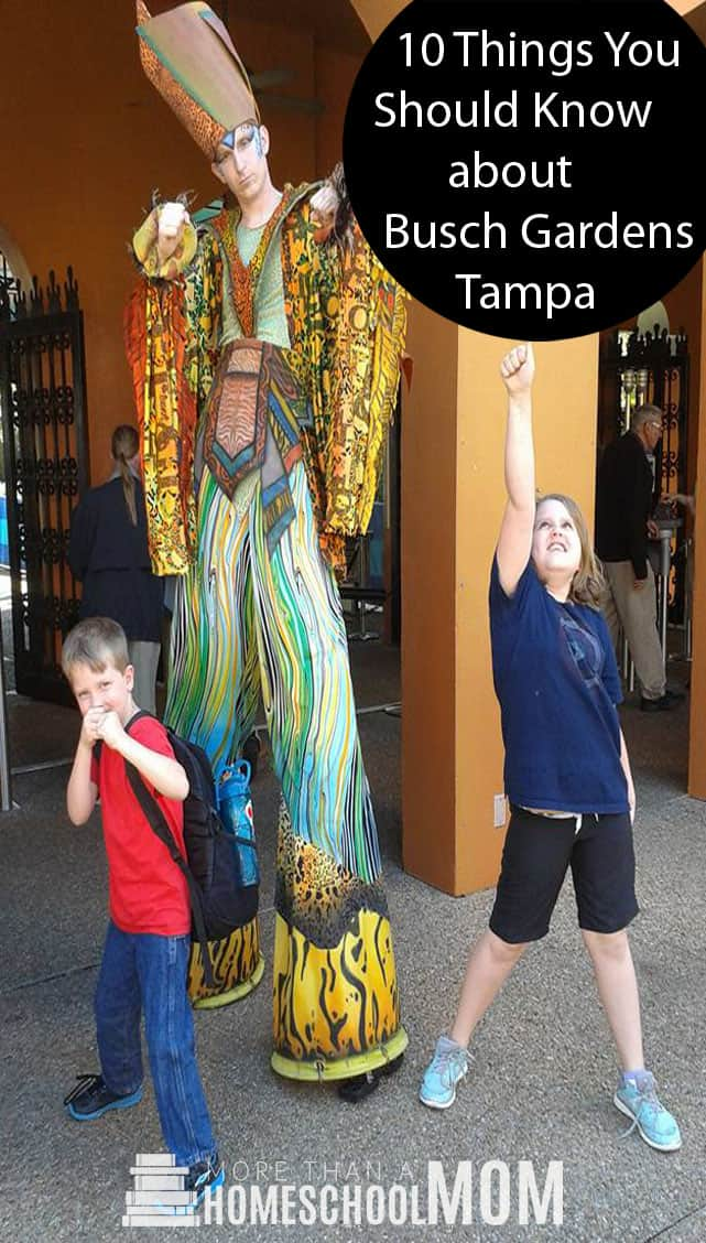 10 Things you Should Know about Busch Gardens Tampa