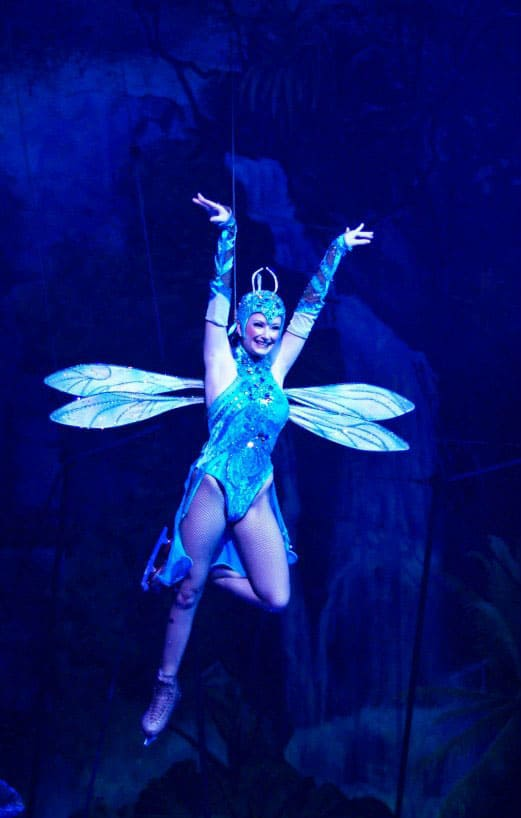 10 things you should know about busch gardens tampa - Can you bring food into busch gardens ...
