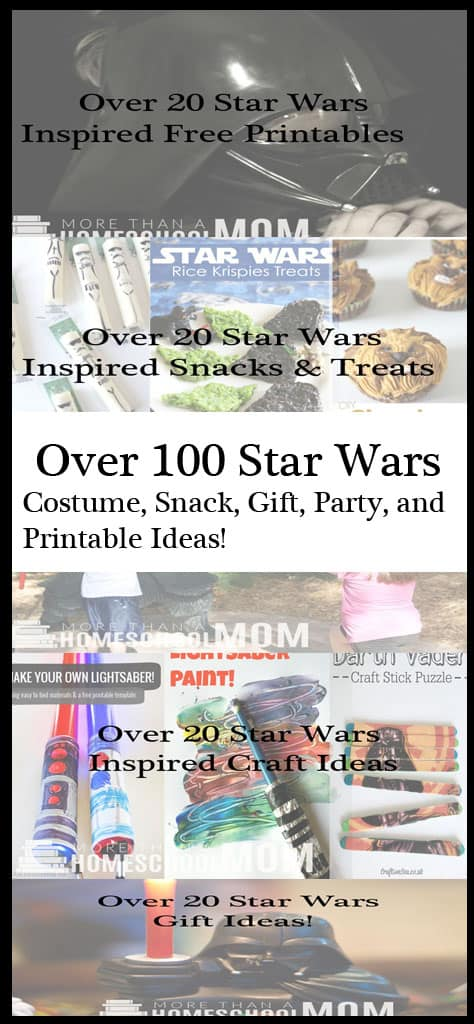Over 100 Star Wars Costume, Snack, Gift, Party and Printable Ideas