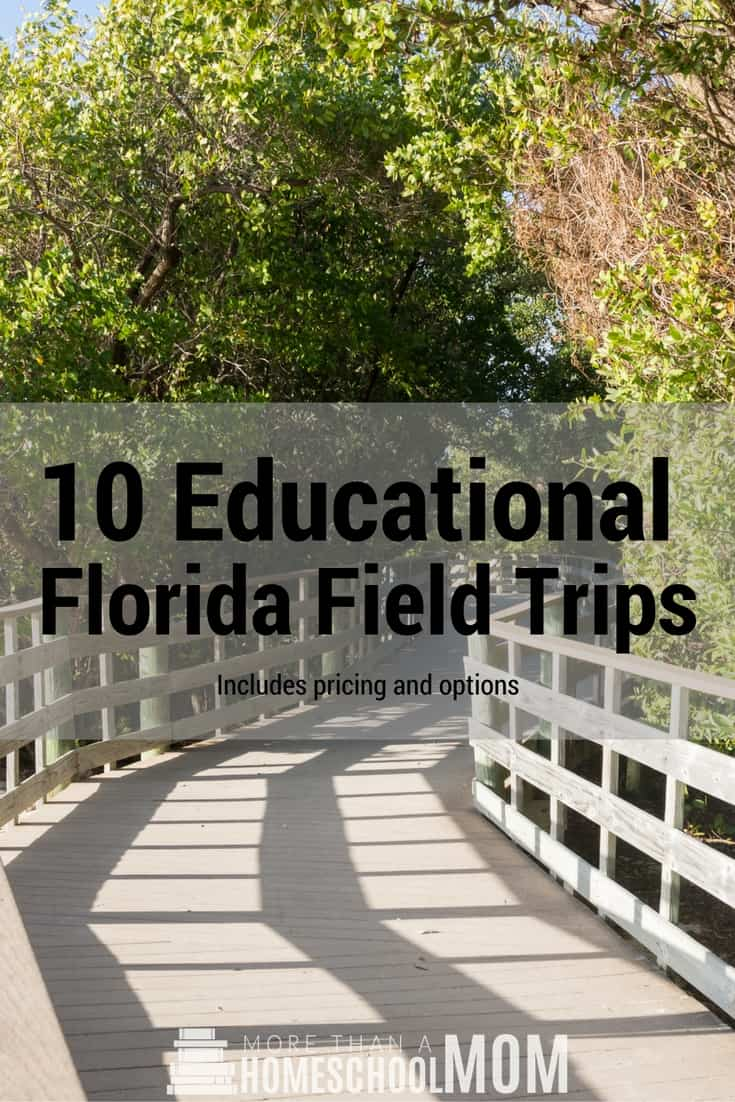 10 Educational Florida Field Trips