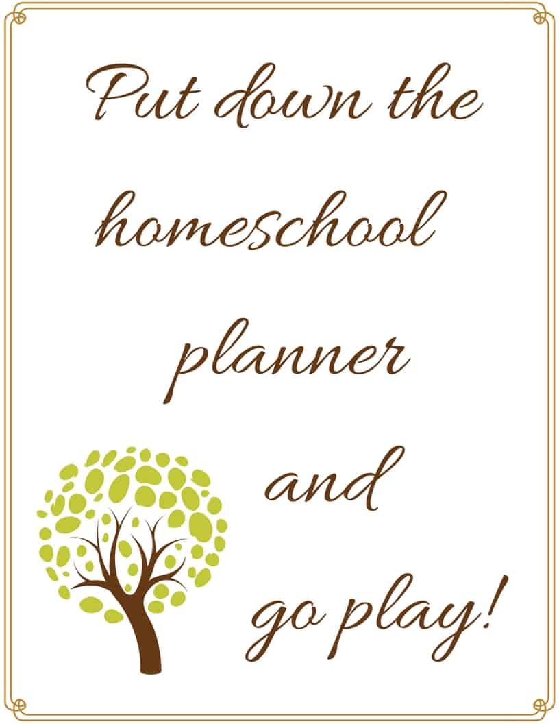 Put down the homeschool planner and go play
