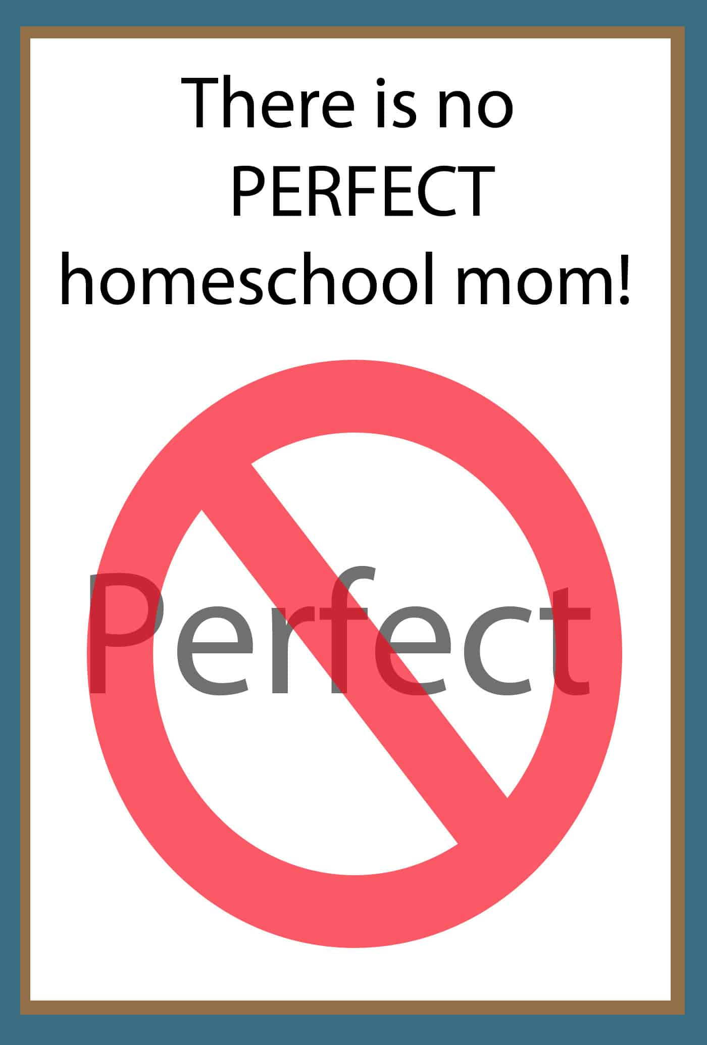 There is no perfect Homeschool Mom