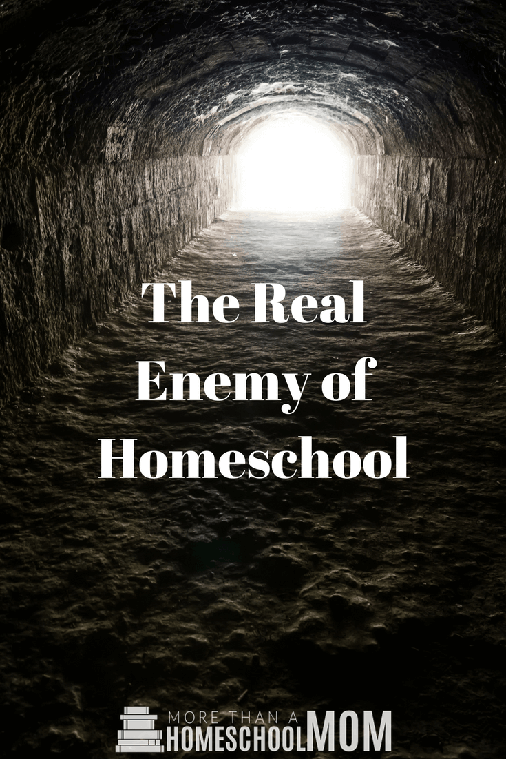The Real Enemy of Homeschool