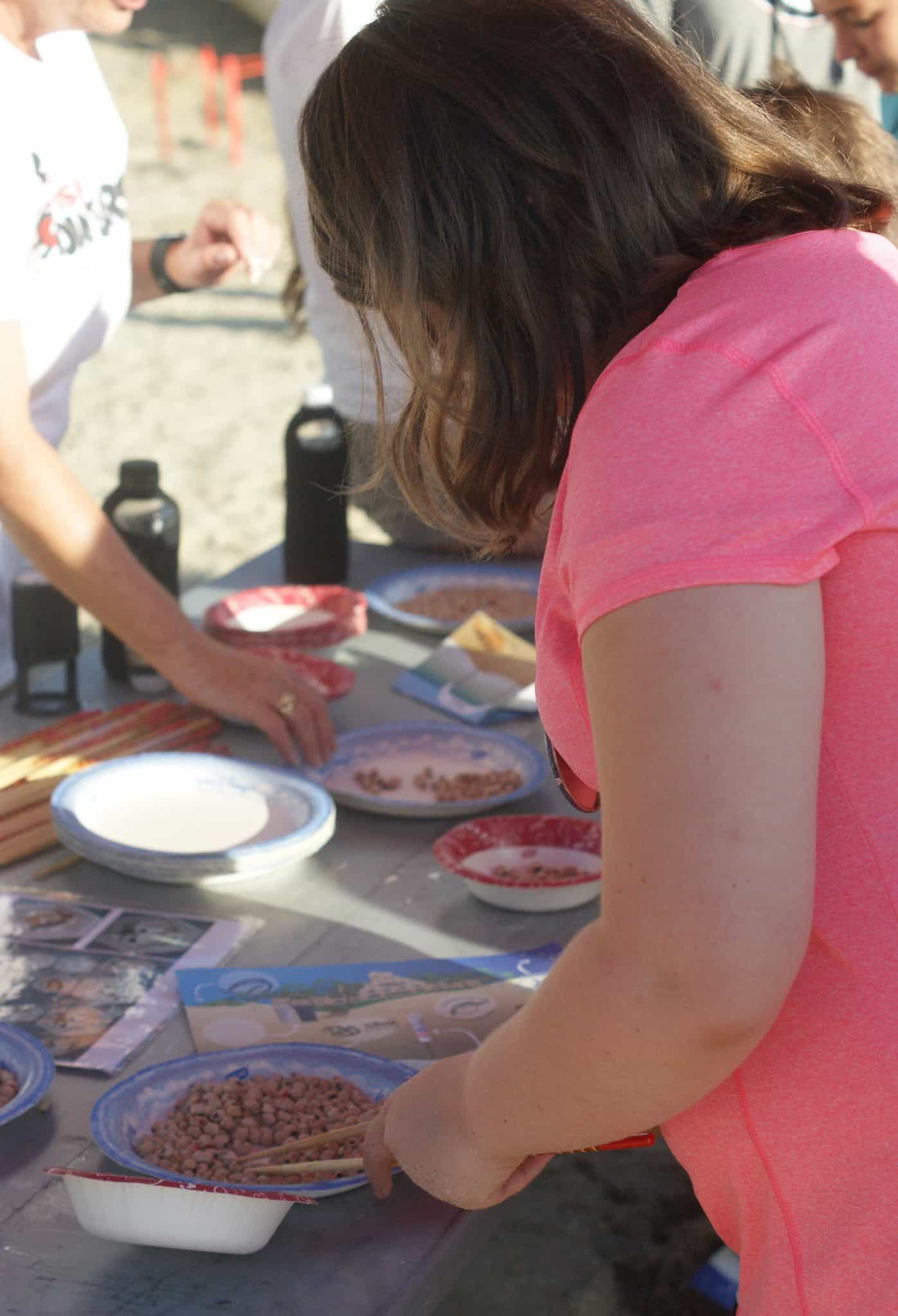What we learned at theTour De Turtles at Disney's Vero Beach Resort - Sea Turtle Food Challenge