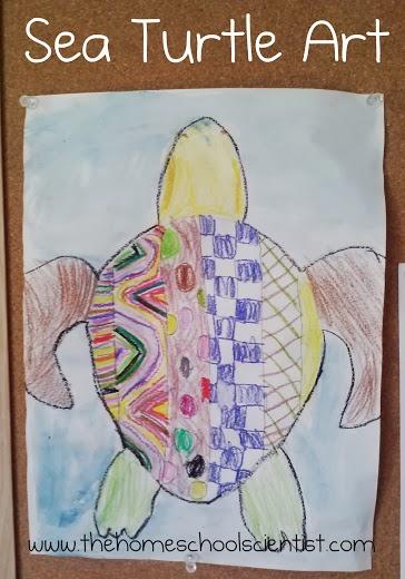 Sea Turtle Art from The Homeschool Scientist