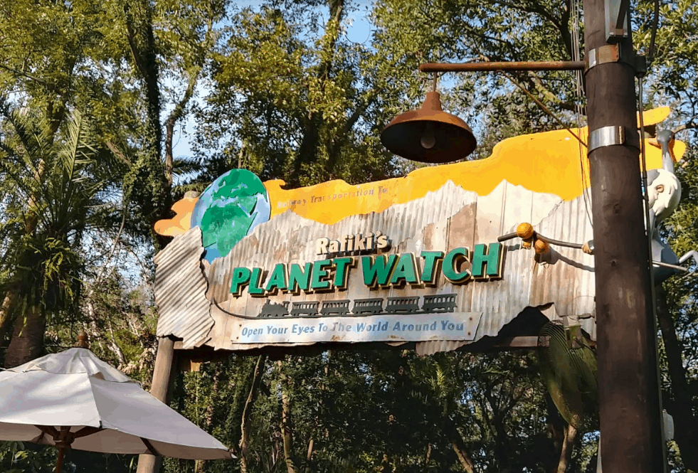 Rafiki's Planet Watch Sign