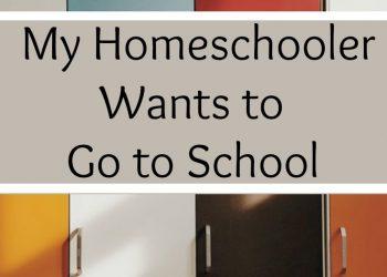 My Homeschooler Wants to Go to School
