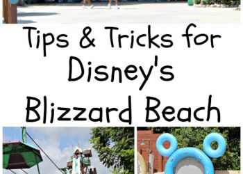 Blizzard Beach Tips and Tricks