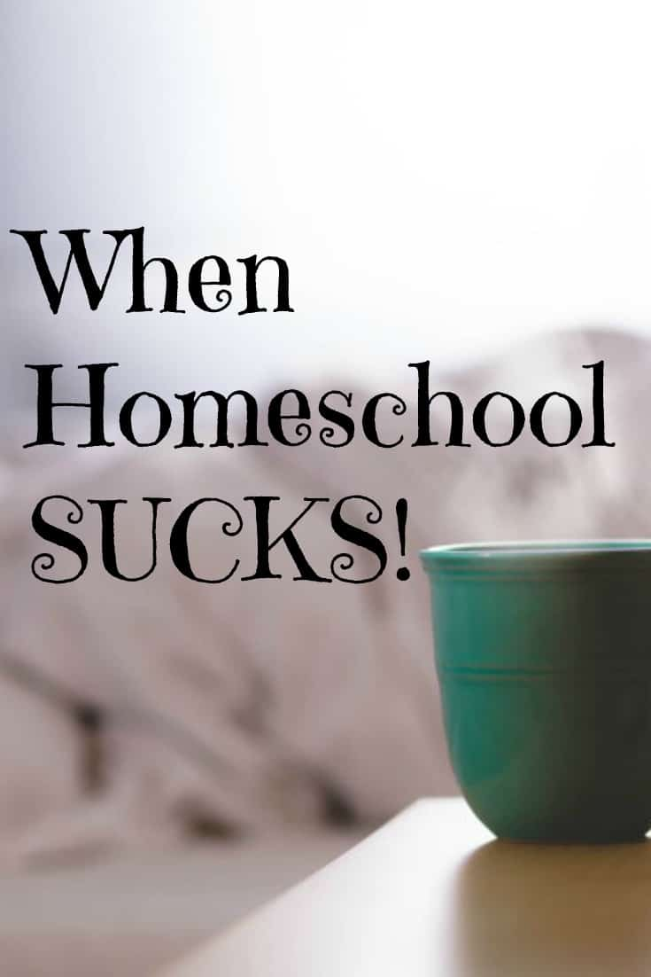 When Homeschool Sucks - Real tips for the not so perfect homeschool days and some honest homeschool encouragement.